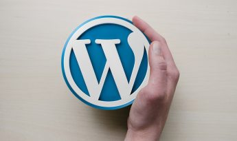formation wordpress en gironde